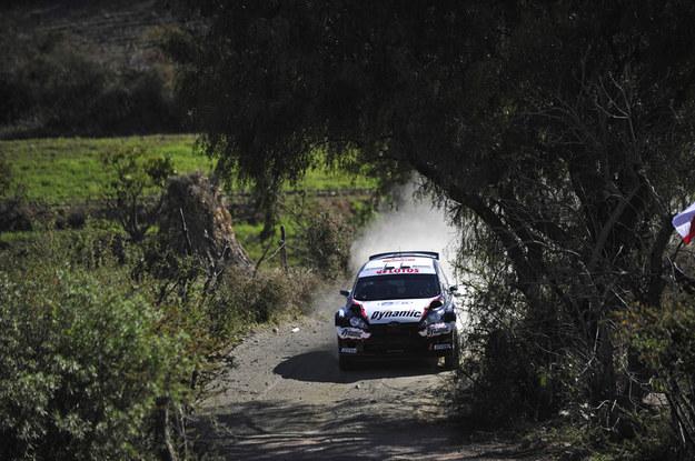 /Dynamic World Rally Team /Materiały prasowe