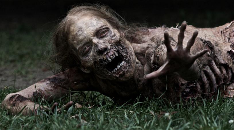 """Dziewczynka-zombie z serialu """"The Walking Dead"""" /materiały prasowe"""