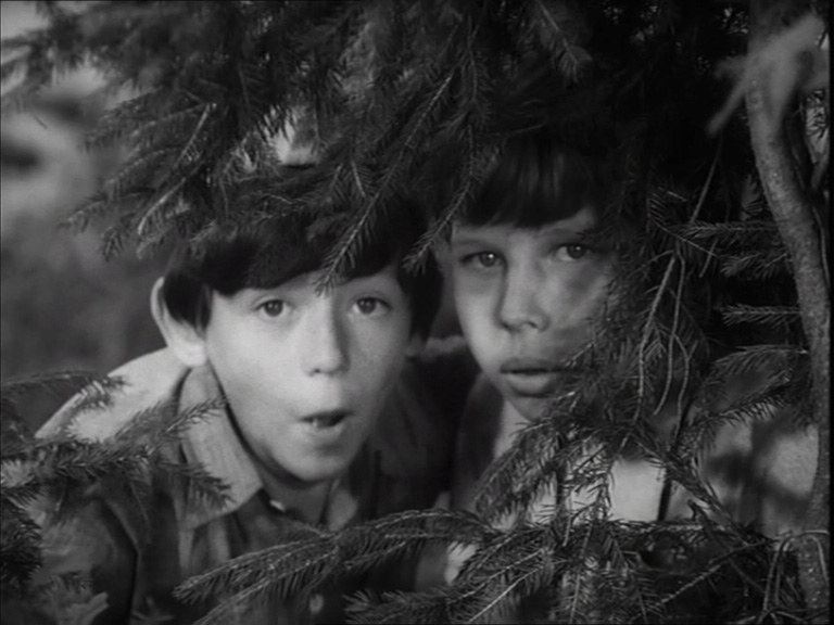 Edward Dymek (Mandaryn) i Roman Mosior (Perełka) /filmpolski.pl /