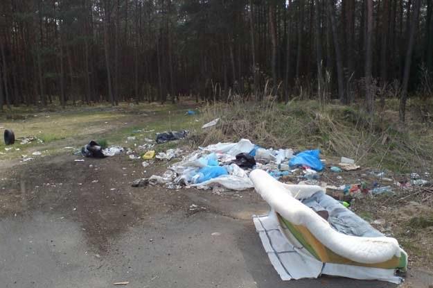 Jest wiele miejsc na ziemi,gdzie można posłuchać szmeru śmieci. Fot. rymil