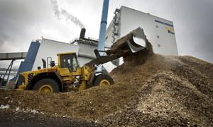Materiałem do produkcji paliwa jest biomasa /AFP