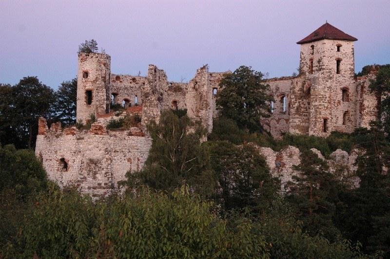 Ruiny zamku Tenczyn /East News