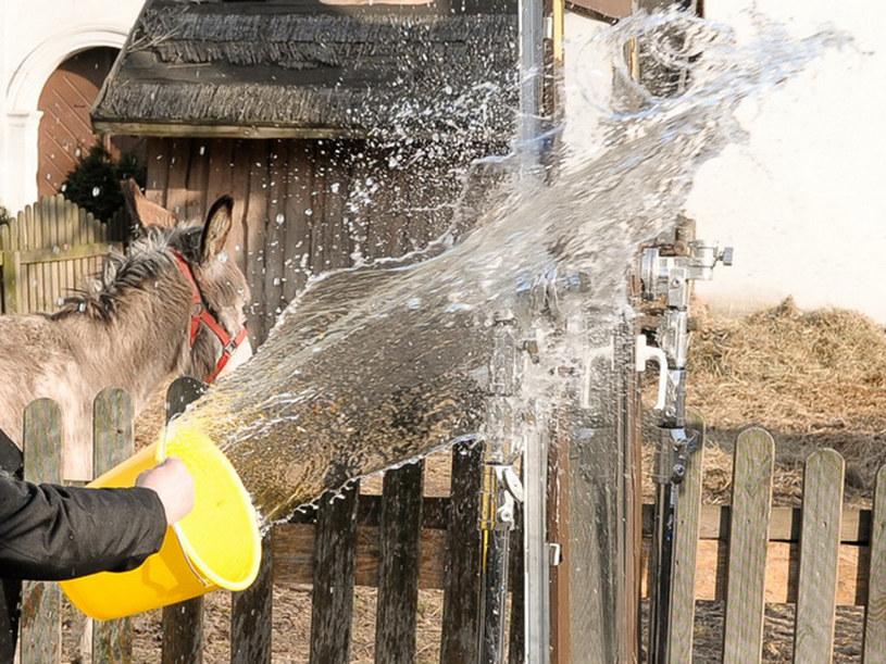 Tak się kręci lanie wody /Agencja W. Impact