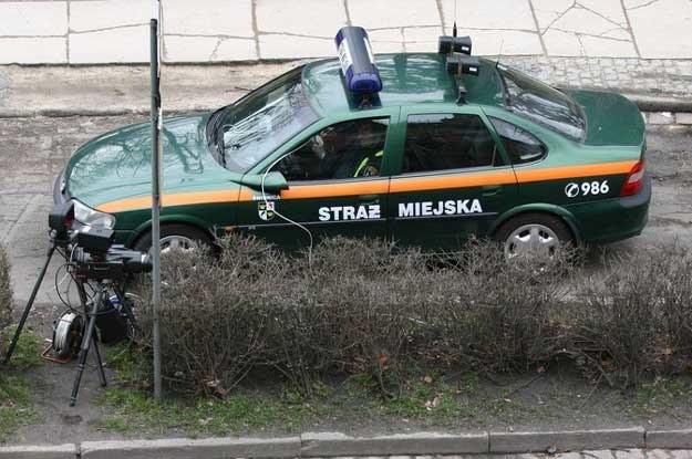 Zamiast pilnować porządku, chronić spokojnych mieszkańców przed chuliganami, koncentrują się na ściganiu kierowców /Fot. Tomasz Pietrzyk /Reporter