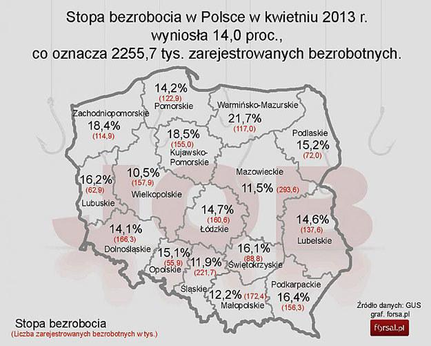 /Forsal.pl