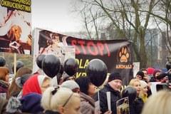 """""""Stop dla skrajnego okrucieństwa!"""" Protest obrońców praw zwierząt"""