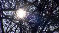"""""""Wydarzenia"""": Wiosna w lutym, na termometrach nawet 21 stopni"""