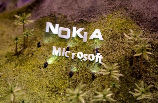 Android również na smartfonach Lumia? /AFP
