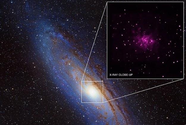 Andromeda   Fot. NASA/CXC/SAO/R. Barnard, Z. Lee et al /NASA