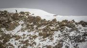 Andrzej Bargiel zdobył 4. szczyt Śnieżnej Pantery. Zakopiańczyk stanął na wierzchołku Chan Tengri