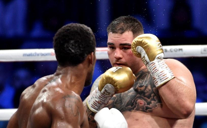 Andy Ruiz jr w pojedynku z Anthonym Joshuą /AFP