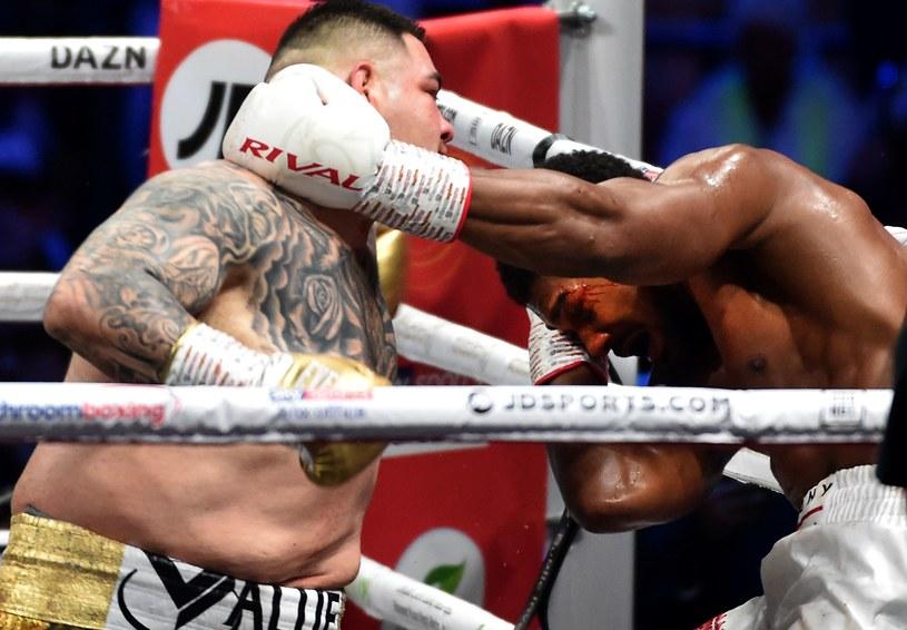 Andy Ruiz junior w walce z Anthonym Joshuą /AFP