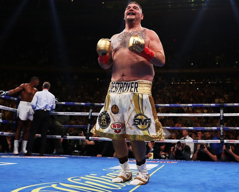 Andy Ruiz junior /AFP
