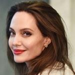 Angelina Jolie na najnowszej sesji. Jej ciało pokryte było żywymi pszczołami
