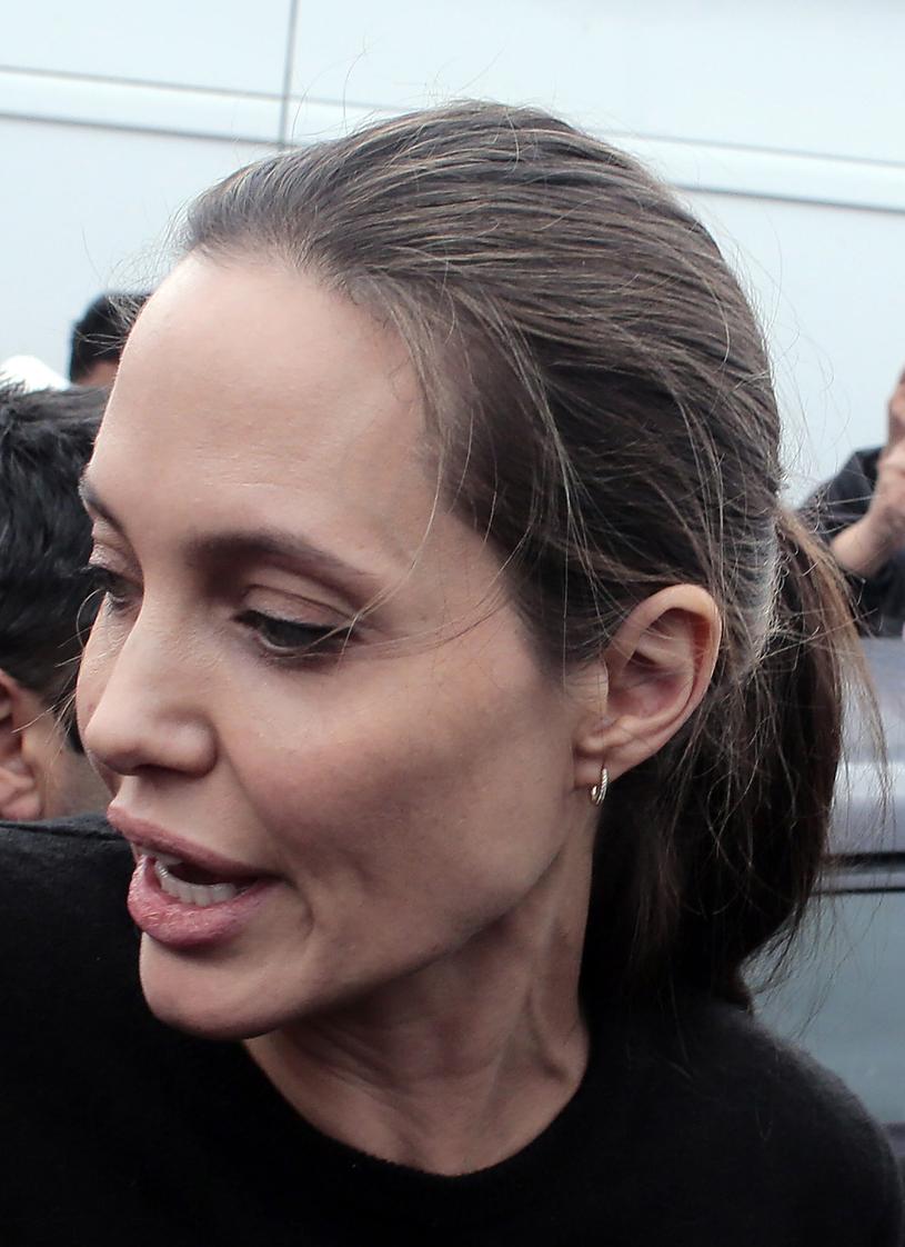 Angelina Jolie /Milos Bicanski /Getty Images