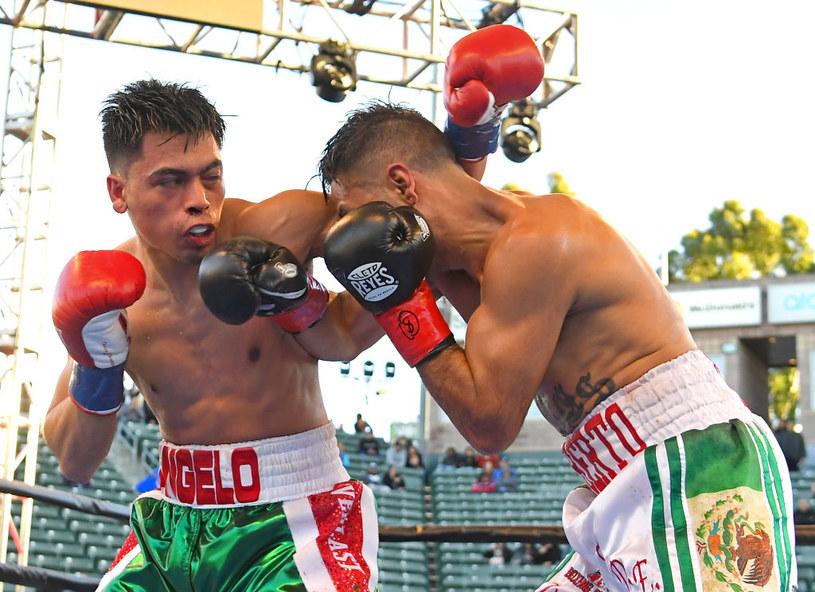 Angelo Leo (z lewej) tu podczas walki z Alberto Torresem /Getty Images