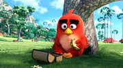 """Angry Birds Film"""