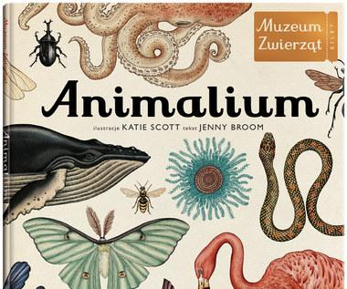 """""""Animalium. Muzeum Zwierząt"""""""