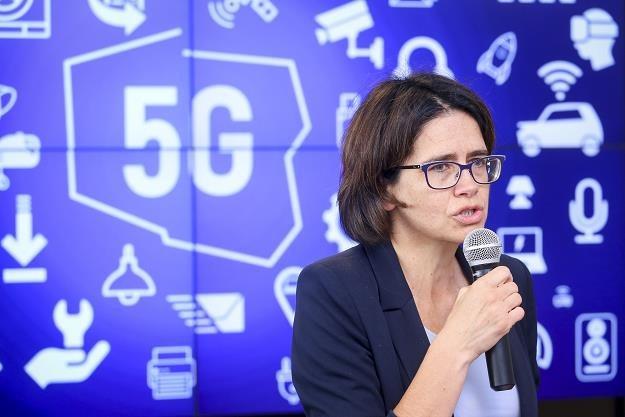 Anna Streżyńska, minister cyfryzacji /fot. Mariusz Grzelak /Reporter