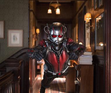 """""""Ant-Man"""": Potrafi zmniejszać się do rozmiarów mrówki"""