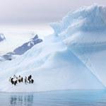 Antarktyka: Z lodem dzieje się coś dziwnego i nikt tego nie przewidział