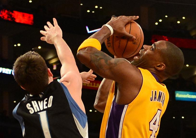 Antawn Jamison, koszykarz Los Angeles Lakers /AFP