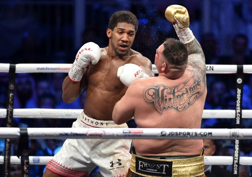 Anthony Joshua pokonał Andy'ego Ruiza jr i odzyskał mistrzowskie pasy /AFP