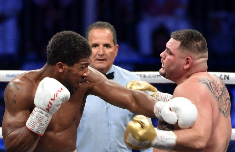 Anthony Joshua w walce z Andym Ruizem /AFP