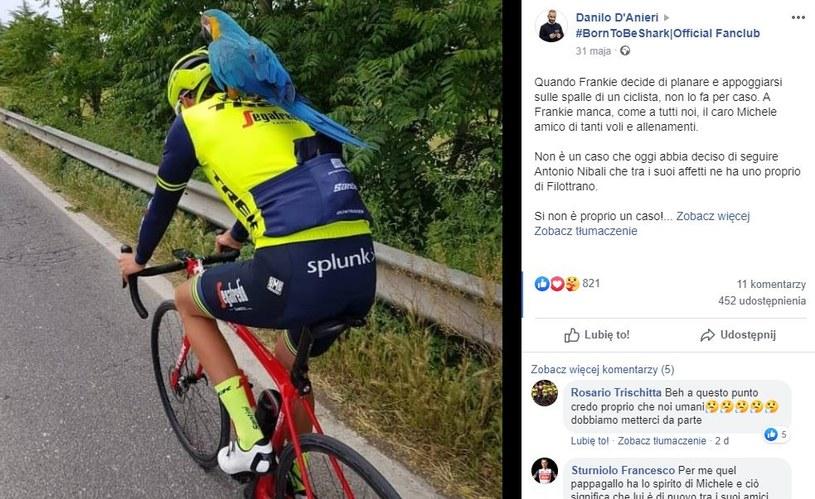 Antonio Nibali na treningu z papugą./ Źródło: #BornToBeShark|Official Fanclub /