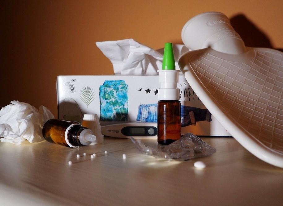 Antygen wirusa grypy A/H1N1/pdmo9 znajduje się w szczepionkach rekomendowanych przez WHO na ten sezon grypowy (zdjęcie ilustracyjne) /foto. pixabay /
