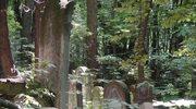 Apel o pamięć o cmentarzach żydowskich