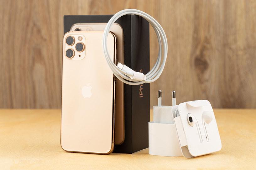 Apple całkowicie zrezygnuje z kabli? /123RF/PICSEL
