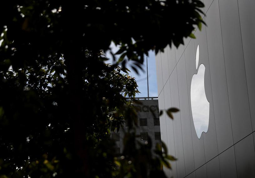 Apple inwestuje w kobalt /AFP