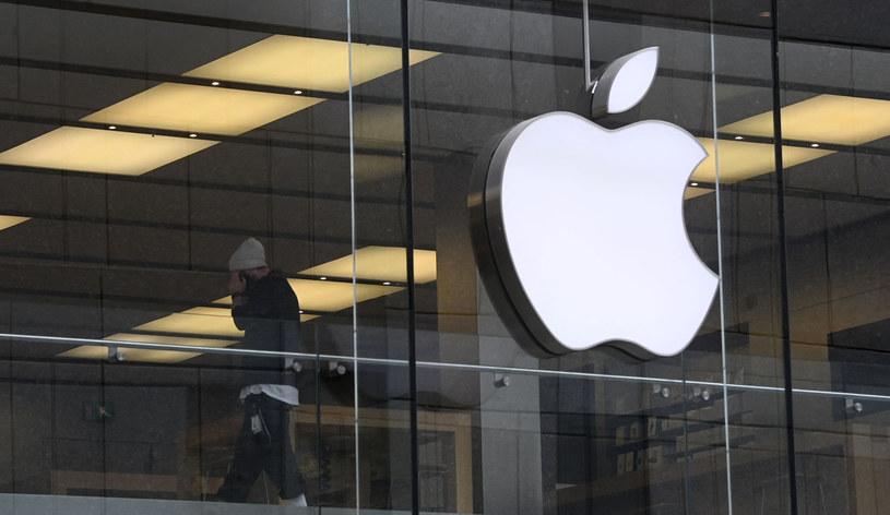 Apple nie jest nielegalnym monopolistą, ale jest winny antykonkurencyjnych praktyk /AFP