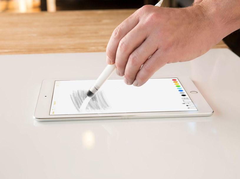 Apple Pencil /materiały prasowe