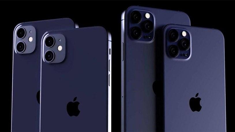 Apple przygotowuje iPhone'a 12 /materiały prasowe