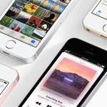 Apple szykuje następcę iPhone'a SE?
