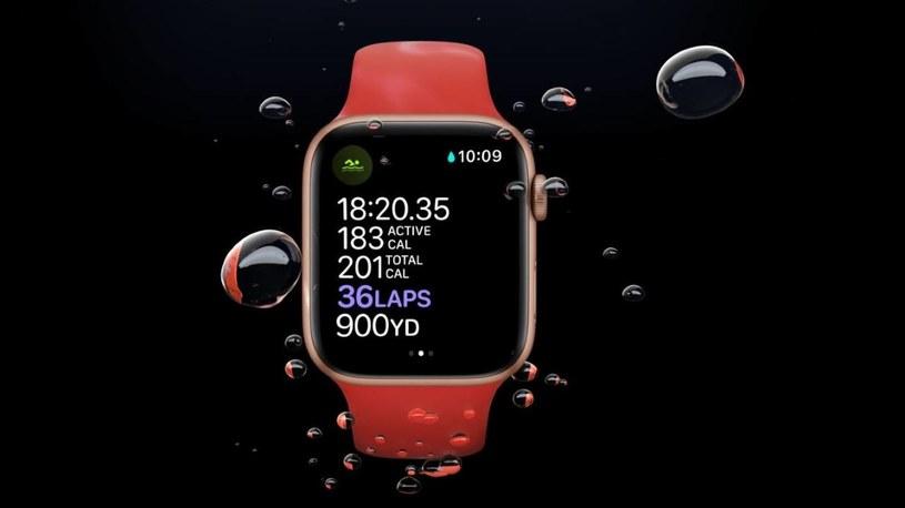 Apple Watch Series 6 rozebrany /materiały prasowe