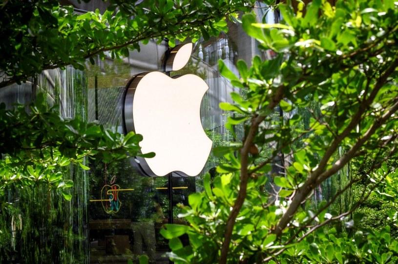Apple wypuści aktualizację systemu iOS 14.8 /AFP
