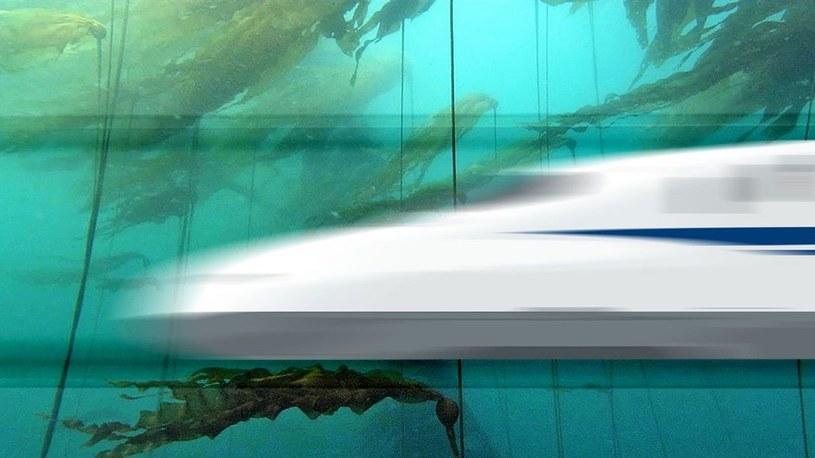 Arabowie zbudują podwodny tunel o długości 1800 km dla superszybkich pociągów /Geekweek