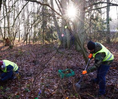 Archeolodzy badają teren w sąsiedztwie Muzeum Stutthof
