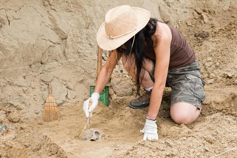Archeolodzy znaleźli ludzki szkielet sprzed 14 tysięcy lat, którego zęby nosiły ślady prób leczenia próchnicy /123RF/PICSEL