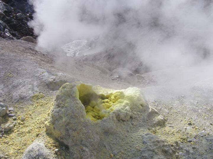 Archeony Sulfolobus islandicus żyją w takich źródłach geotermalnych jak te na Kamczatce /materiały prasowe