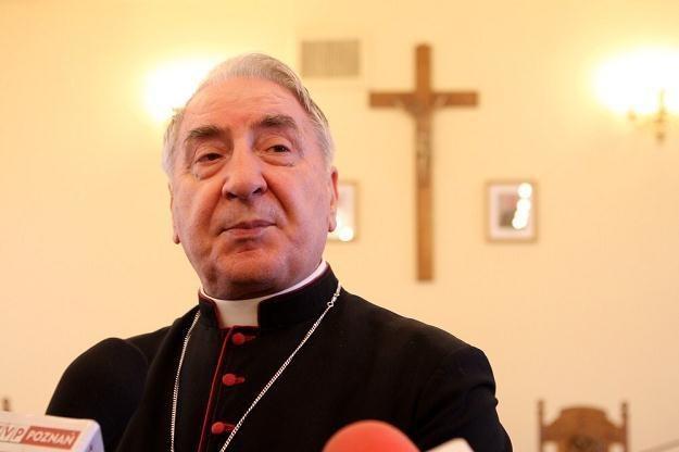 Arcybiskup Józef Kowalczyk /Przemysław Szyszka /East News