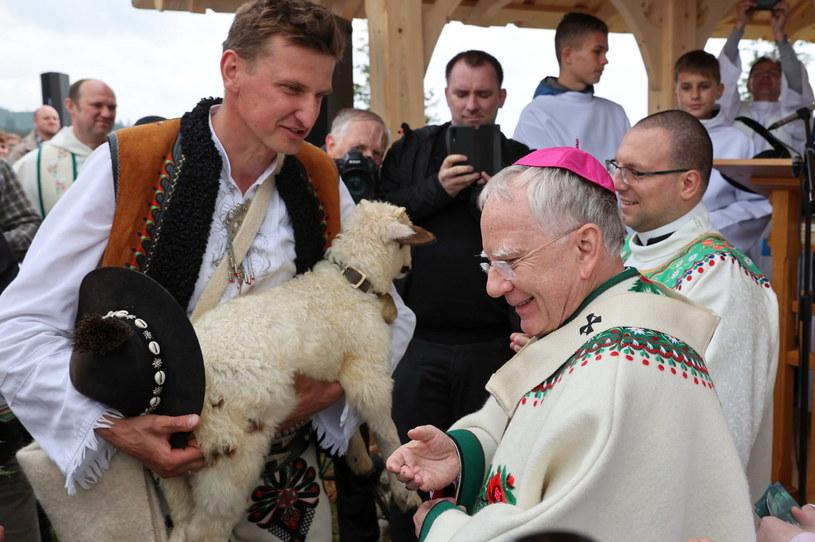 Arcybiskup Marek Jędraszewski /Grzegorz Momot /PAP