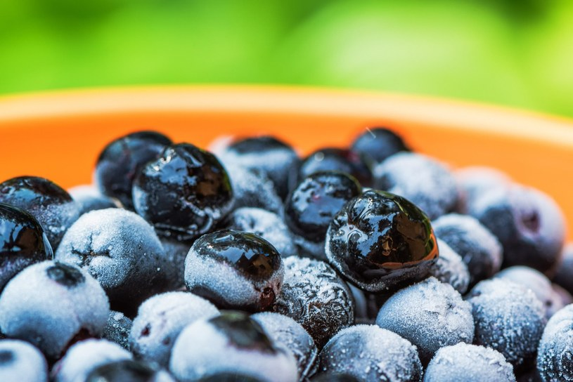 Aronia to najzdrowszy owoc jagodowy /stevanovicigor/easyfotostock /East News