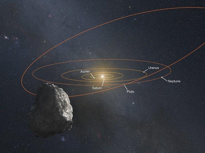 Artystyczna wizja widoku z PT1 na nasz Układ Słoneczny /NASA