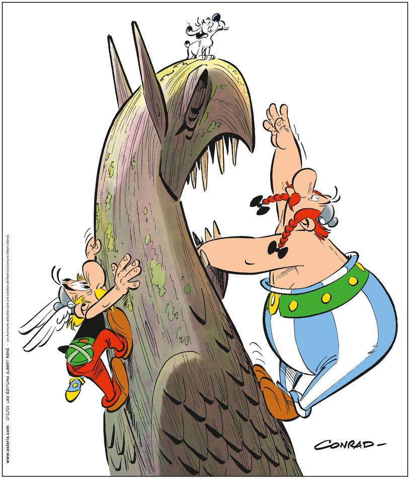 Asteriks i Gryf /materiały prasowe