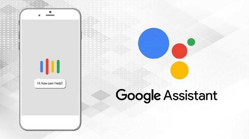Asystent Google /materiały prasowe