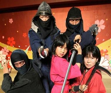 Atak Grupy Ninja na internet